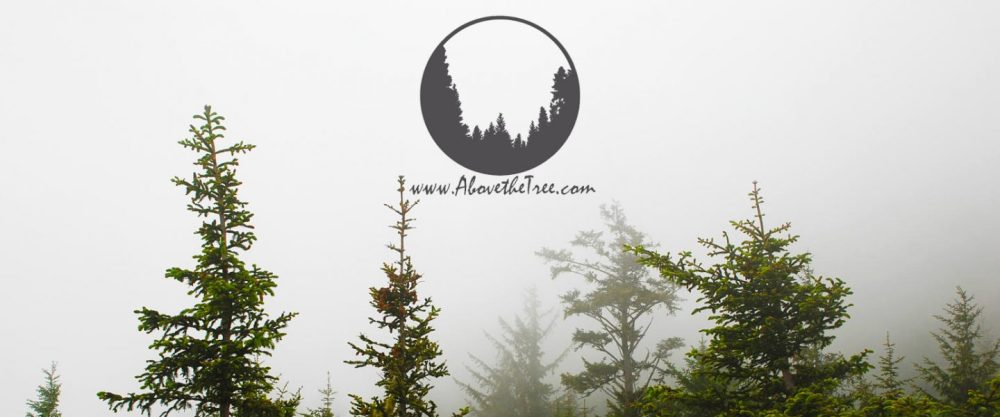 cropped-above-the-tree-banner1.jpg